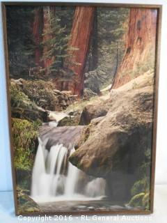 "Large Photo Artwork Framed 21.5"" W X 30"" T"