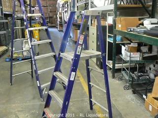 Green Bull Inc. Ladder
