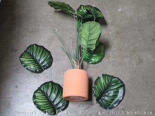 Plant (please preview)