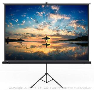 "Large 120"" Movie Projection Screen (Online $99)"