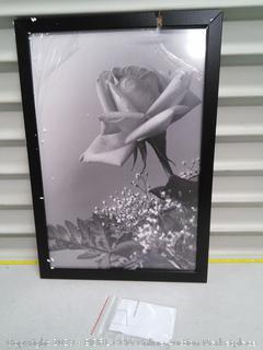 Frame (broken)