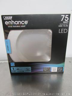 Feit Electric Enhance 12.3W/75W Retrofit Light Kit