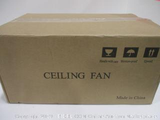 Ceiling Fan  And Lights