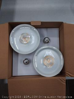 EcoSmart 90-Watt PAR38 Non-Dimmable Flood LED Light Bulb (Online $18)