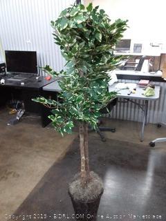 vickerman 6 feet artificial variegated ficus tree