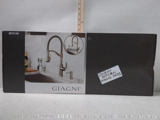 Giagni Pompa Stainless Steel 1-Handle Pull-Down Kitchen Faucet (online $245)
