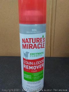 Natures Miracle Stain & Odor Remover, Foam 17.50 oz