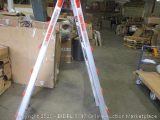 Little Giant Ladder System