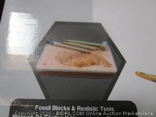 Dinosaur Fossil Excavation & Building Kit (2 Per Lot)