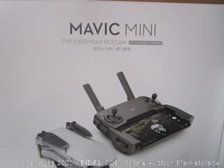 Mavic Mini Everyday Flycam