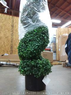 Seven Oaks Topiary Spiral Tree