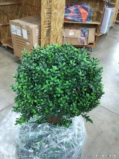 Northwood kalagher 4.6 ft artificial topiary triple ball boxwood tree