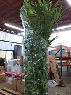 7' biggy bamboobwith 1,536 leaves