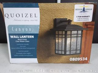 Canyon wall Lantern Black finish Clearwater glass (online $69)