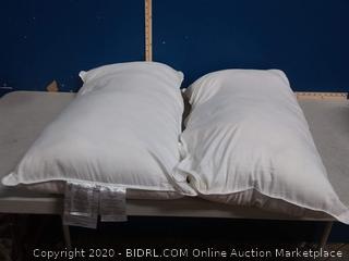 amazonbasics 20 in x 36 in pillow