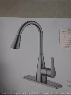 project Source pull down kitchen faucet