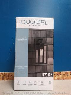 Quizel Light (Small Dent)