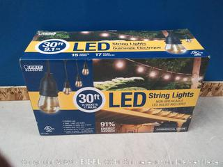 Feit Electric 72117 LED String Lights (online $51)