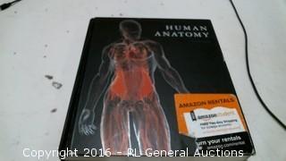 Human Anaomy