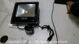 30W Light