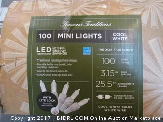 Mini Lights Powers on Please Preview