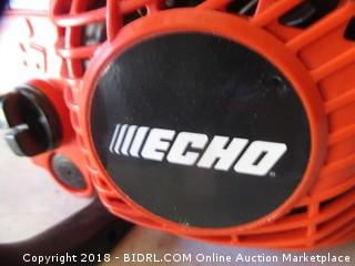 Echo Chainsaw